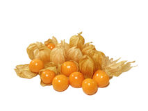 Many vivid yellow ripe Cape gooseberries, some with calyx and some without calyx. Isolated on white background Stock Photos