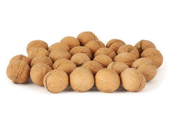 Many walnuts Royalty Free Stock Images