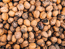 Many walnuts. Nuts in a box. Texture nuts stock image
