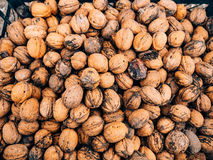 Many walnuts. Nuts in a box. Texture nuts stock images