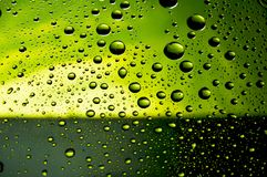 Many water drops Royalty Free Stock Photography