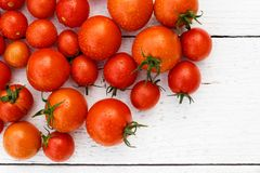 Many wet red  tomatoes with stalks on white wood board from abov. E. Space for text Stock Photo