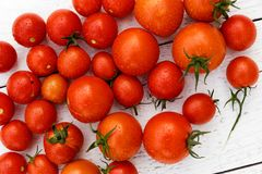 Many wet red  tomatoes with stalks on white wood board from abov. E Stock Photography