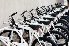 Many of white-black bicycles parking. Line up Royalty Free Stock Photography