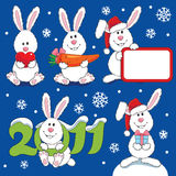 Many white hare. A New Year theme Stock Photos