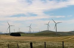 Many Windmills for miles around. Waubra Wind Farm With one single windmill standing alone in beautiful pastures Royalty Free Stock Photography