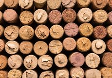 Many wine corks, macro view. Stoppers wine background Royalty Free Stock Photography