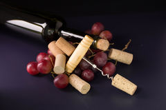 Many wine corks and a vintage cork screw and red grape on a dark Royalty Free Stock Photos