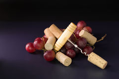 Many wine corks and a vintage cork screw and red grape on a dark Royalty Free Stock Photo