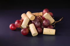 Many wine corks and a vintage cork screw and red grape on a dark Stock Photos