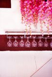 Wine glasses hanging up side down. royalty free stock photos