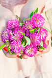 Many wishes. Girl hands holding meadow clover/trefoil bunch. Royalty Free Stock Images