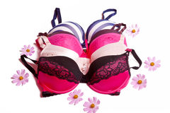 Many women's bras. A number of beautiful color lace women's bras Royalty Free Stock Image