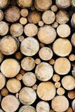 Many wood logs piled up, natural wooden texture as background Stock Photo