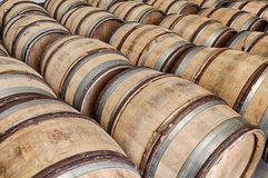 Barrels Of Wine In Chablis. Many wooden barrels are waiting for wine in a winery near the town of Chablis in France royalty free stock photo