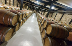 Many wooden barrels in  winery factory Royalty Free Stock Images