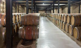 Many wooden barrels in  winery Royalty Free Stock Images