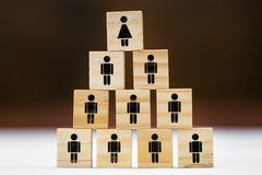 Many wooden blocks with symbols for man and woman on it, different concepts such as women`s quota or feminism royalty free stock image