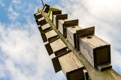 Many wooden boxes for birds hanging on an electricity pole Stock Photography