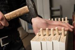 Many wooden dowel pins Royalty Free Stock Photos
