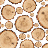 Many wooden slices. Of different sizes, can be used as background Royalty Free Stock Image