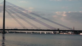 Many yachts near to the bridge with traffic stock video footage