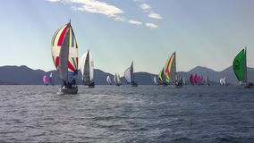 Many yachts with spinnaker on a sailing regatta. In the Mediterranean Sea stock video