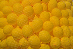 Many yellow balloons in the mesh Royalty Free Stock Photos