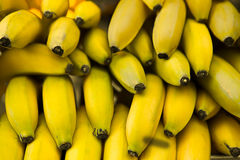 Many yellow bananas Stock Images