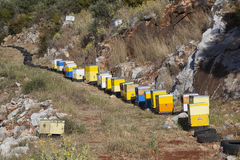 Many yellow and blue beehives in the hills of mani on greek pelo Stock Photos