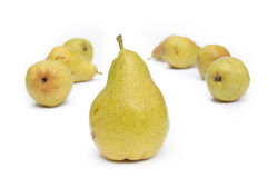 Many yellow pears Stock Photo