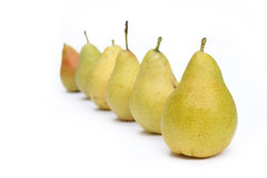 Many yellow pears in row Stock Photos