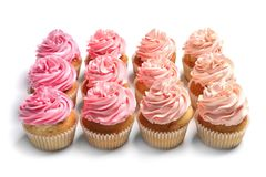 Many yummy cupcakes. On white background Royalty Free Stock Photography