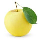 Manzana amarilla con la hoja aislada en un blanco Fotos de archivo libres de regalías