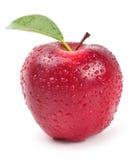 manzana - camino Fotos de archivo