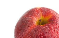 Manzana cubierta de rocio Imágenes de archivo libres de regalías