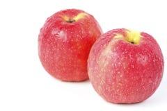 Manzana de dos rojos. fotos de archivo
