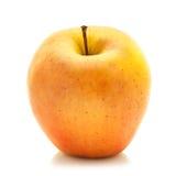 Manzana de Jonagold Foto de archivo libre de regalías