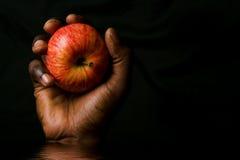 Manzana de la explotación agrícola de la mano imagen de archivo libre de regalías