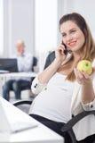 Manzana de la explotación agrícola de la mujer embarazada fotografía de archivo