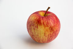 Manzana de la gala en un fondo blanco Fotos de archivo libres de regalías