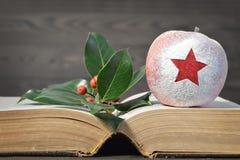 Manzana de la Navidad, bayas y libro viejo Fotos de archivo libres de regalías