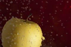 Manzana de oro Fotos de archivo