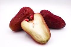 Manzana de Rosa Foto de archivo libre de regalías
