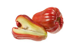 Manzana de Rose Fotografía de archivo libre de regalías