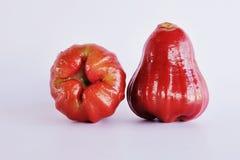 Manzana de Rose fresca Foto de archivo libre de regalías