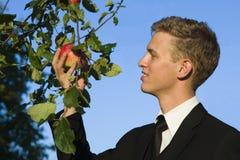 Manzana del muestreo del hombre joven Imagenes de archivo