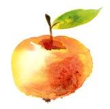 Manzana del Watercolour Fotos de archivo