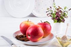 Manzana dulce orgánica fresca, madura en plato con los palillos de canela, estrellas del anís y miel Imágenes de archivo libres de regalías