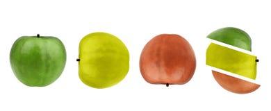 Manzana, entero verdes, amarillos, rojos y rebanadas. Imagen de archivo